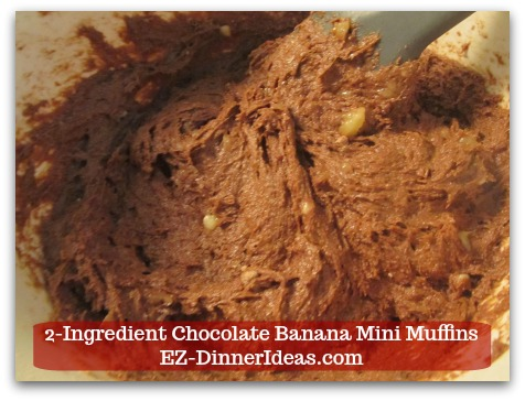 Devils Food Recipe | 2-Ingredient Chocolate Banana Mini Muffins - Till everything is well combined and no dry lumps.  The batter is very moist.
