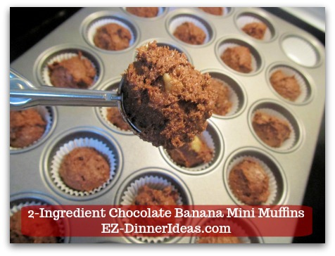 Devils Food Recipe | 2-Ingredient Chocolate Banana Mini Muffins - Use an ice-cream scoop about 2 tsp and scoop batter into each liner.