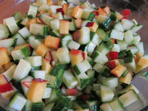 Back To School Recipes - Cucumber Nectarine Salad